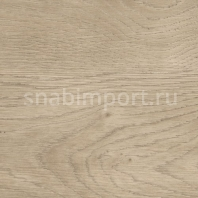 Дизайн плитка Polyflor SimpLay Wood PUR 2506 Grey Country Oak